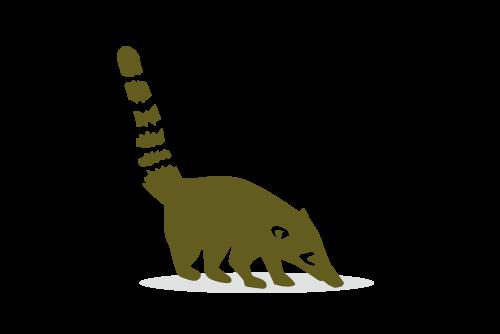 icon-coati